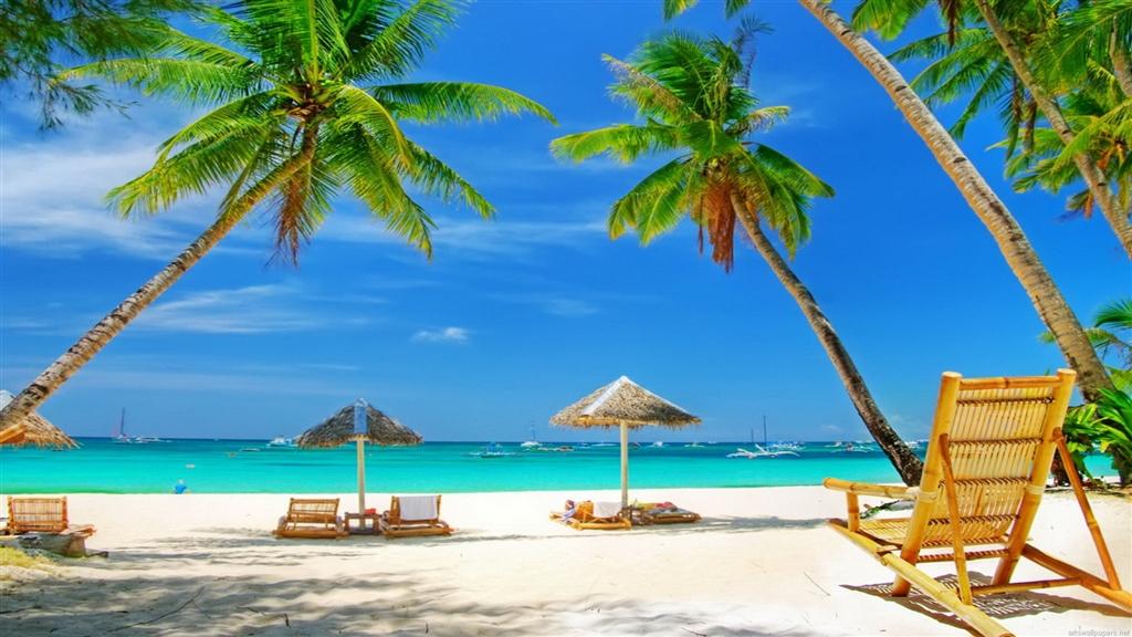 Oferte Sunny Beach