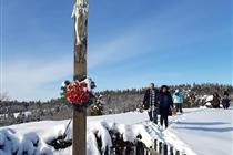 Excursie • 1 zi • Muntii Banatului • TransAlpina Bănăţeană • SAMBATA • 6  Februarie • 199 Lei. ACUM DOAR 129 Lei. Plecare din Timisoara