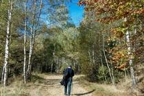 Excursie 1 zi TransAlpina Banateana • Sambata 26 Octombrie • 99 Lei • Plecare din Timisoara